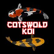 cotswold koi