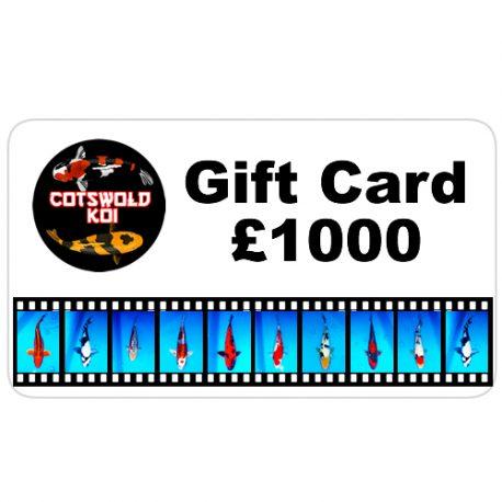 gift card-1000