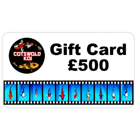 gift card-500
