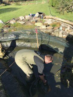pond-clean-swindon-wiltshire-3
