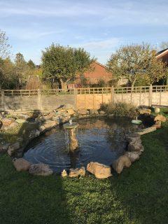 pond-clean-swindon-wiltshire-6