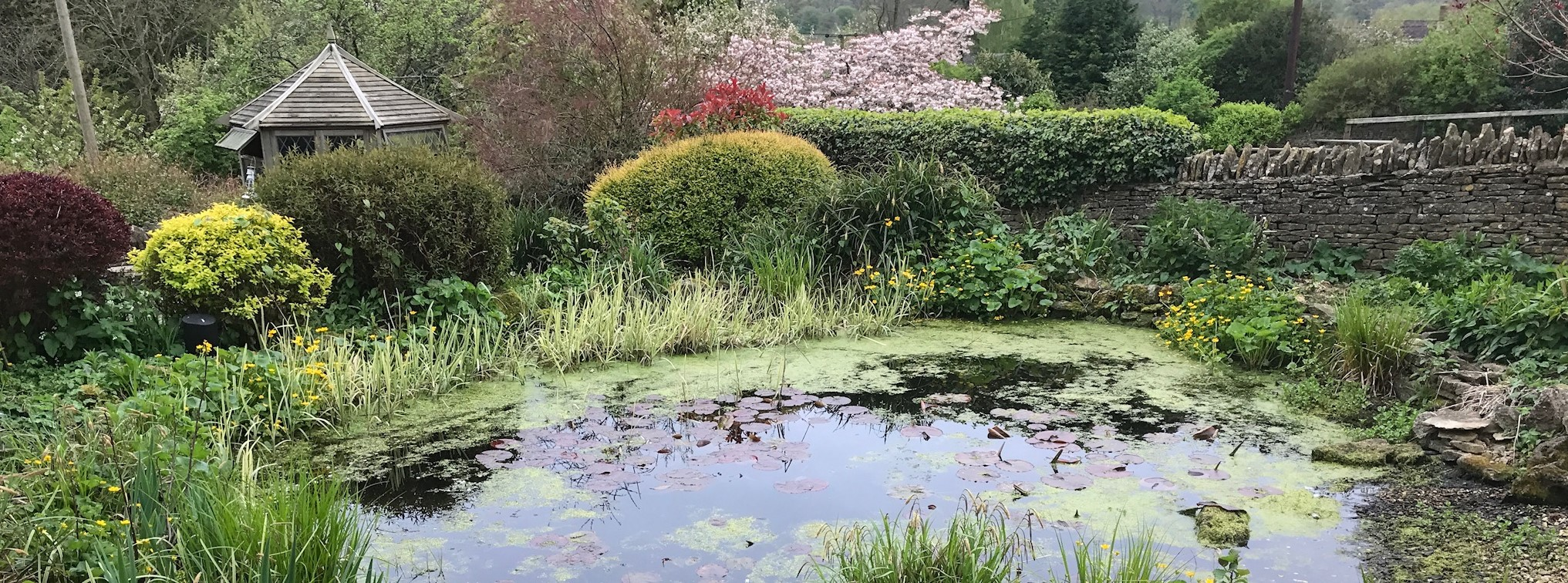 pond-cleaning-oxfordshire