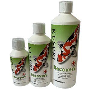 Kusuri Recovery