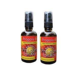 Propolis Food Supplement
